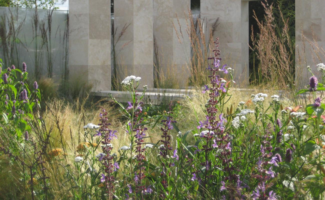 Amanda Patton Hampton Court modern garden design 6