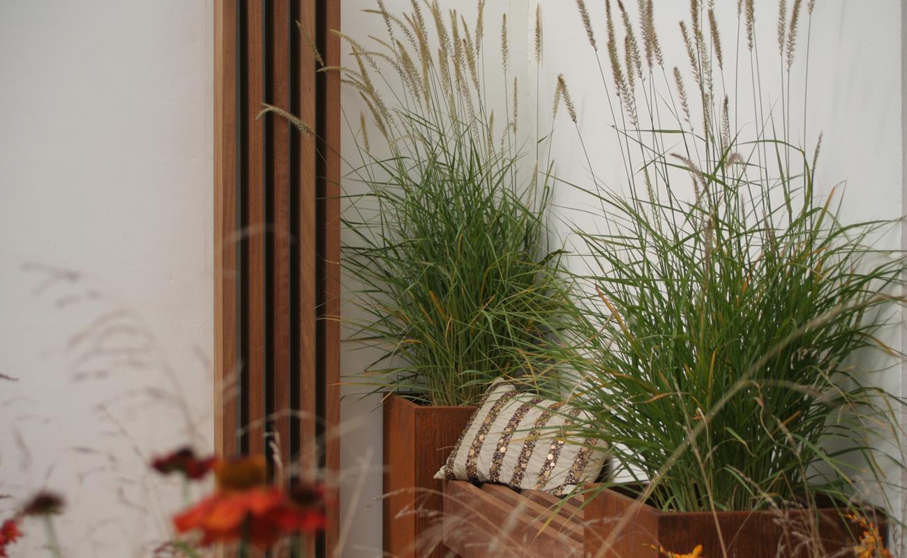Amanda Patton gold medal winning natural garden 4