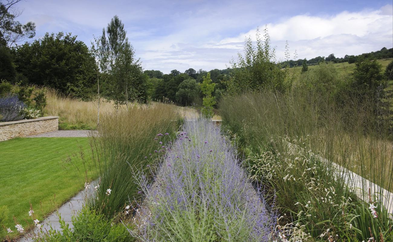Bath-garden-design-Amanda-Patton-1
