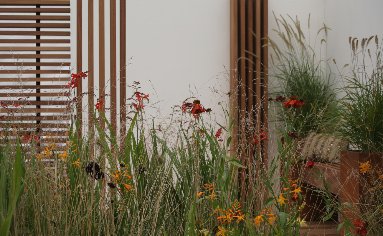 Amanda Patton gold medal winning natural garden 6