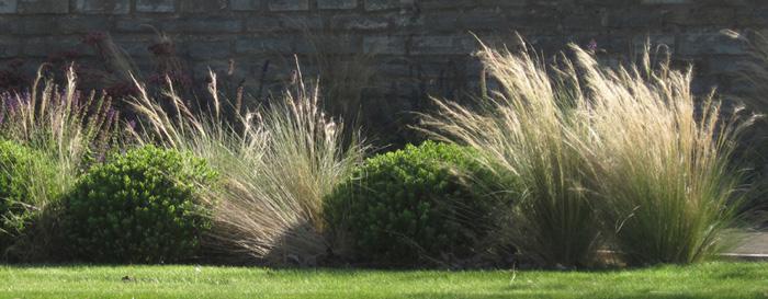 Amanda-Patton-garden-design-tips-5