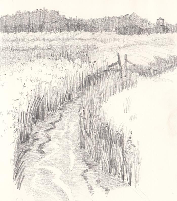Pulborough-Broooks-landscape-design-Amanda-Patton-3
