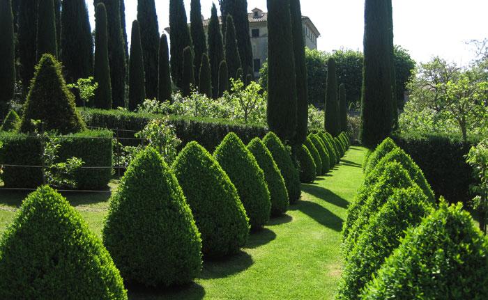 Tuscan gardens tour Amanda Patton (14)