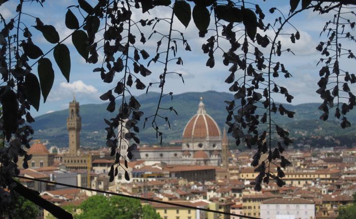 Tuscan gardens tour Amanda Patton (6)