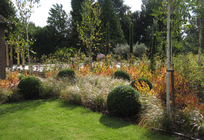 leading-Sussex-garden-designer 2