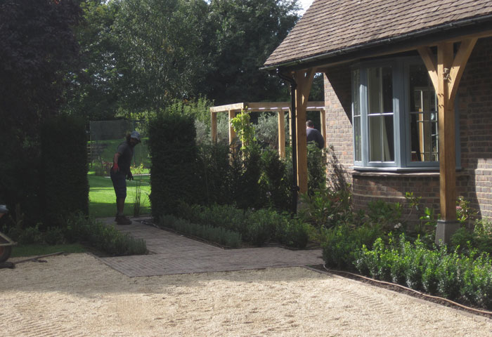 top Sussex garden designer (14)