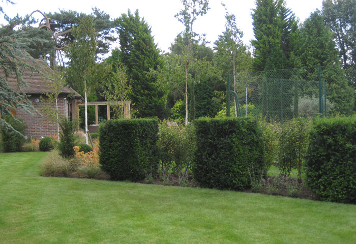 top Sussex garden designer (5)